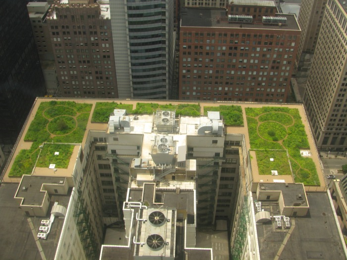 20080708_Chicago_City_Hall_Green_Roof